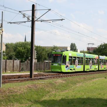 Linie 5 auf der Albert-Vater-Straße (Foto: Andreas Gürtler, MD)