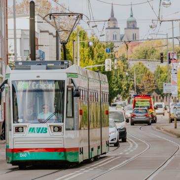 Straßenbahn der Linie 4 in Cracau
