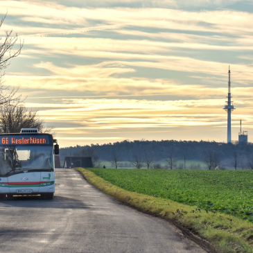 Die Buslinie 66 auf einer Umleitungsstrecke. (Foto: Christian Schulz)