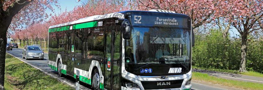 Buslinie 52 im Holzweg