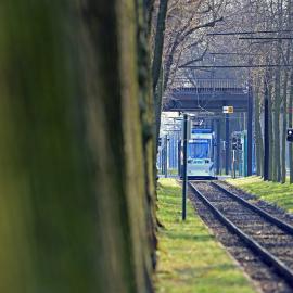 Straßenbahn im Herrenkrug (Foto: Peter Gercke)