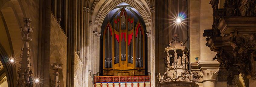 Orgel im Magdeburger Dom (Foto: Gotthard Demmel)