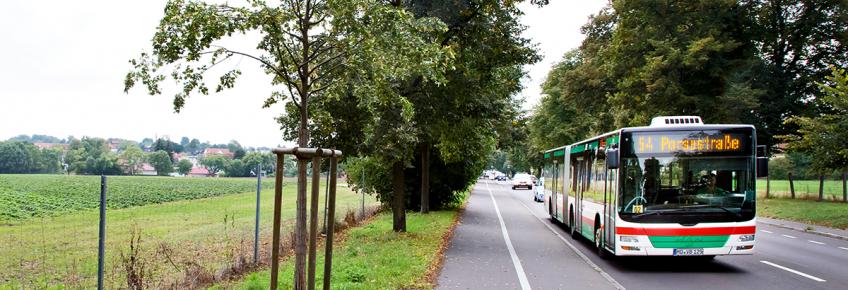 Buslinie 54 (Foto: Stefan Deutsch)