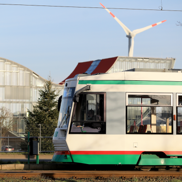 Straßenbahn in Richtung Barleber See (Foto: Stefan Gercke)