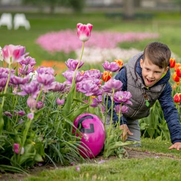 Frühling im Elbauenpark (Foto Andreas Lander)